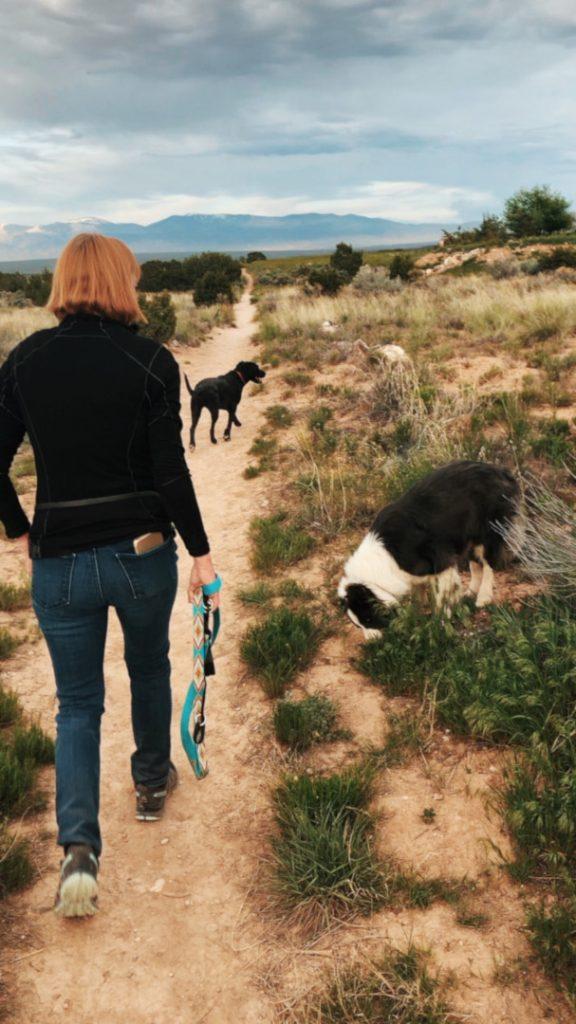 lette beim trainieren mit ihren hunden in new mexico